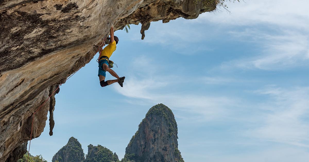 Waarom je nú wil (leren) klimmen   Bever